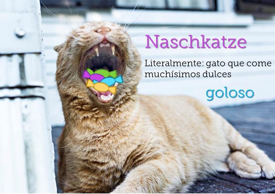 © StockSnap.io